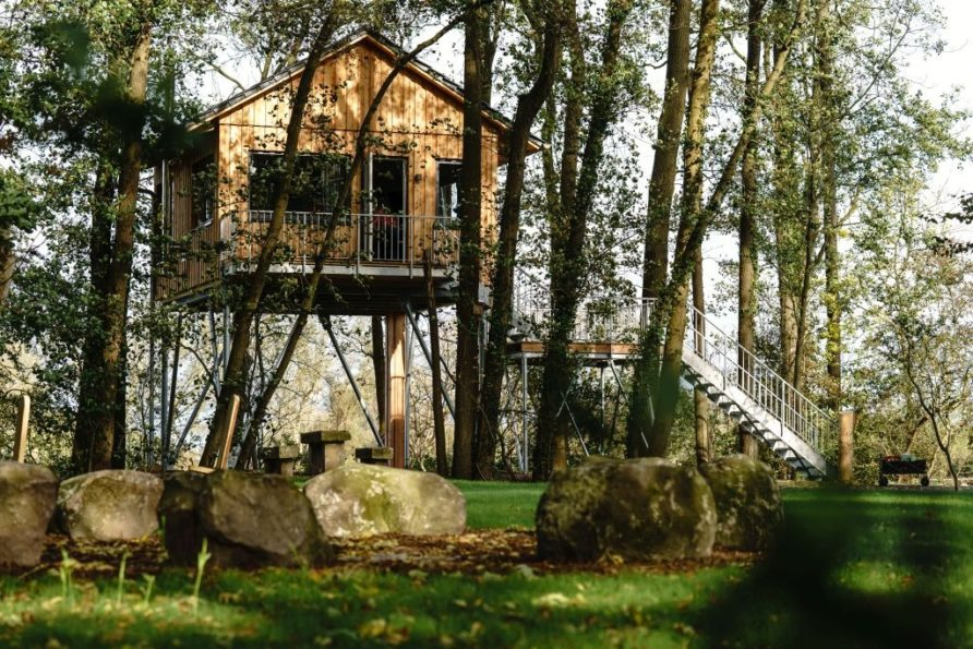 Baumhaus Rotkehlchen