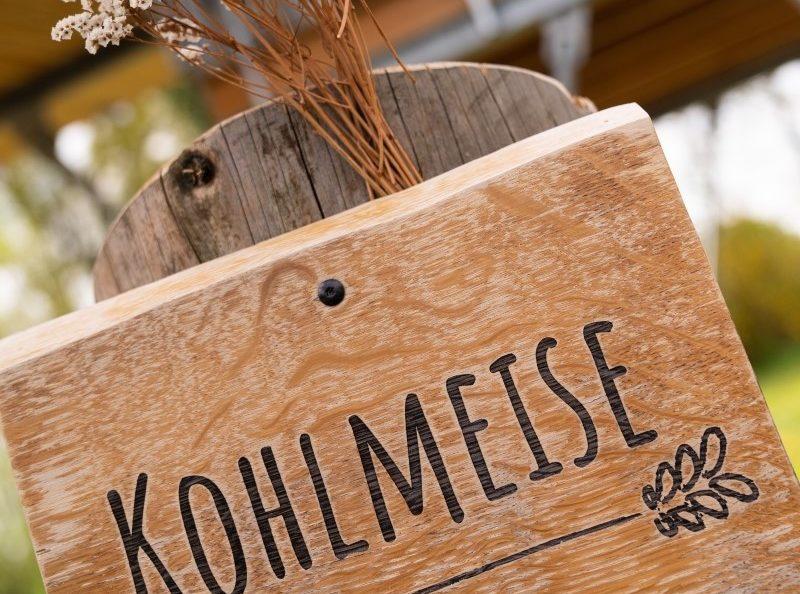 baumhaus-kohlmeise