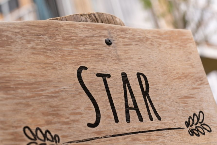 baumhaus-star