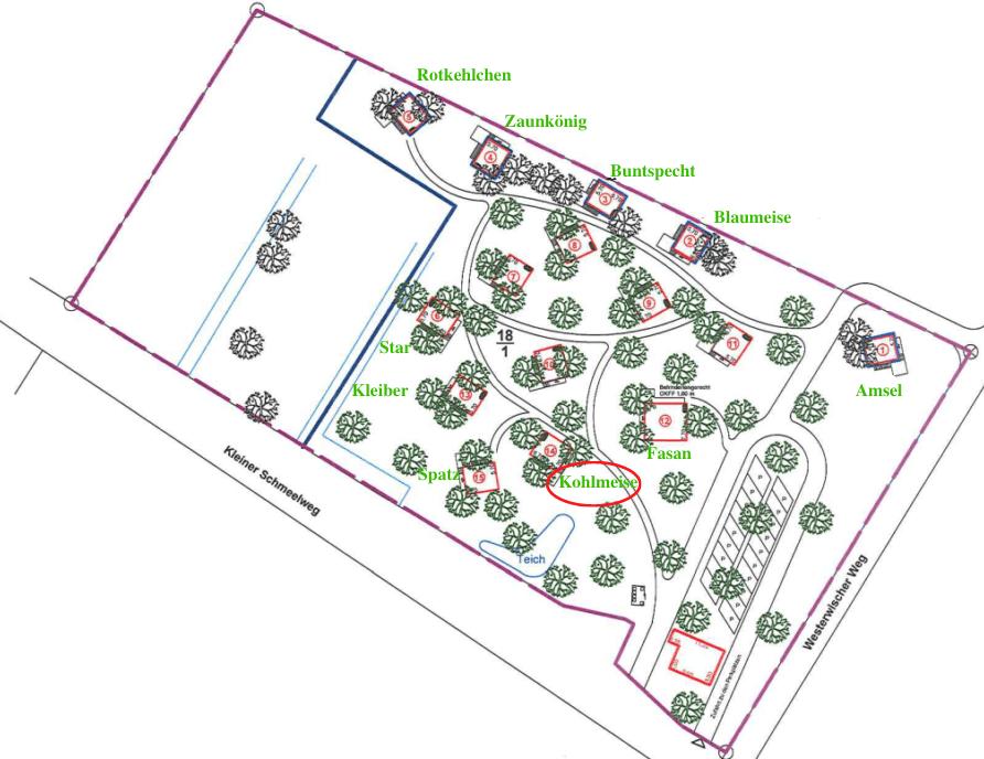 baumhaushotel-gelaendeplan-kohlmeise